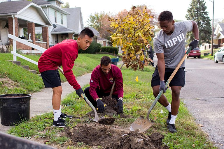 Members of the IUPUI men's soccer team plant a tree.