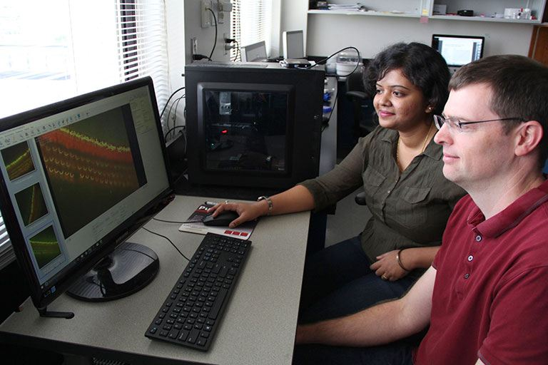 IUPUI cell biologist Ben Perrin and graduate student Pallabi Roy.
