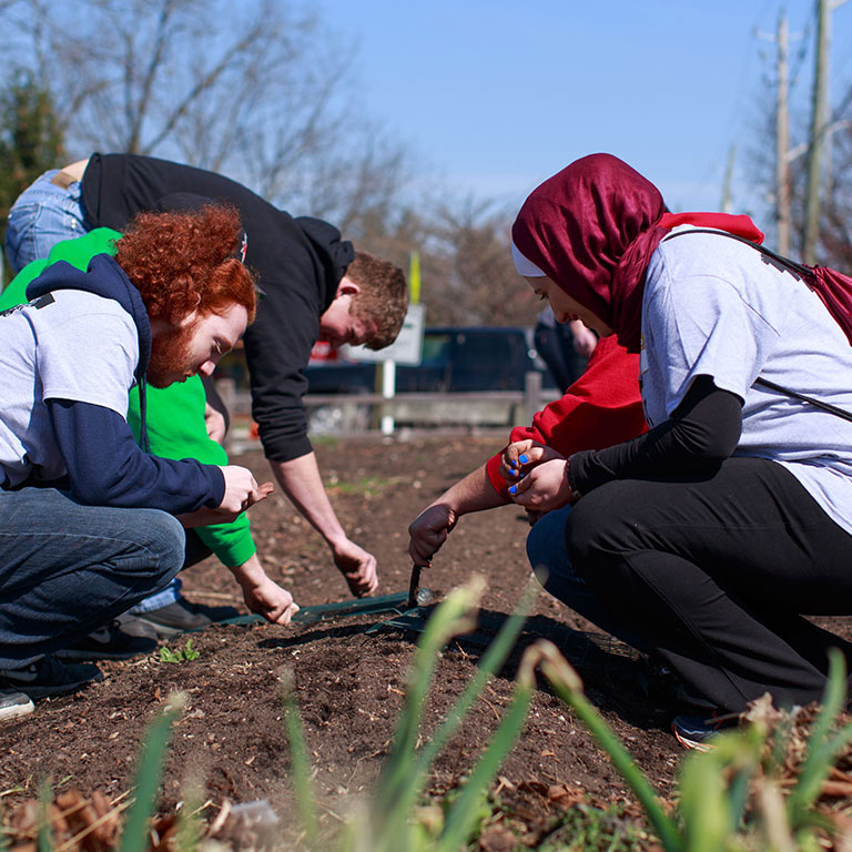 Four students plant trees on Cesar Chavez day of service.